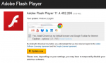 No–I don't want Chrome with my Flash Player Upgrade